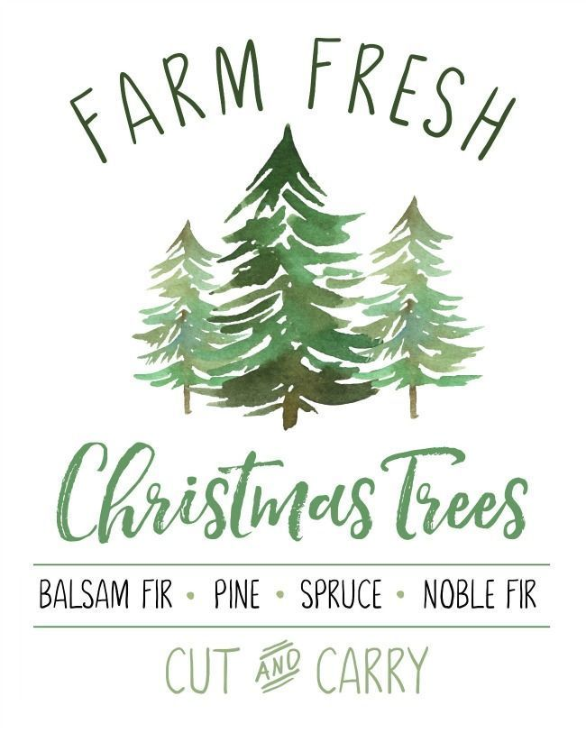 Photo of Farm Fresh Christmas Trees Free Christmas Printable – Clean and Scentsible