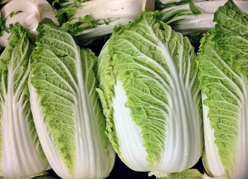Michihili Napa Chinese Cabbage Seeds Non Gmo Naturally Grown Open Pollinated Heirloom Gardening In 2021 Cabbage Seeds Chinese Cabbage Cabbage