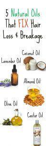 5 NATURAL OILS THAT STOP HAIR LOSS & BREAKAGE Health Care Fitness - Hair breakage treatment - Tokat...
