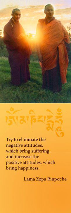 try to eliminate the negatives, which bring suffering and increase the positives, which bring happiness