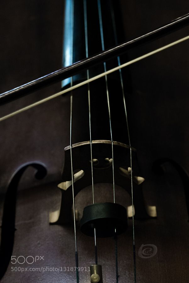 listen the violoncello painting the tones - Pinned by Mak Khalaf it creates the 12 tones of the chromatic scale the zone Fine Art Conductorartblackbrasscellochorusclassical musiccolorconcertdouble bassfine artinstrumentsjazzlightlivelondonmetalmusicmusicianorchestrapercussionstringsymphonicsymphony orchestraviolaviolinvioloncellowhitewoodwind by luisfcordoba1
