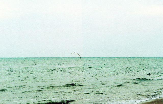 seaaa by lenavorona, via Flickr #Ukraine #sea #green