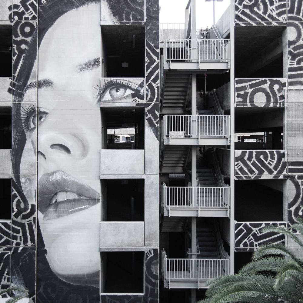 Street art by rone rone street artist pinterest street art