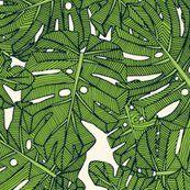 Rrmonstera-leaves-green-pearl-st-sf-08022018-7000hd-ps11_shop_thumb