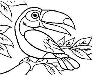 Desenhos Para Colorir Papagaio Periquito Tucano E Arara