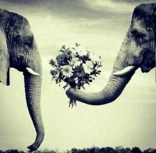Amore!!! ♥