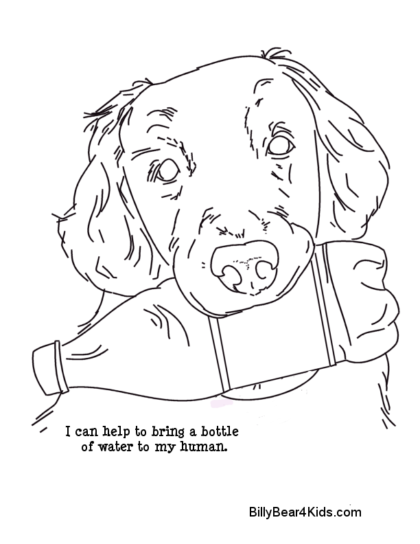 7300 Top Coloring Pages Of Service Dogs For Free