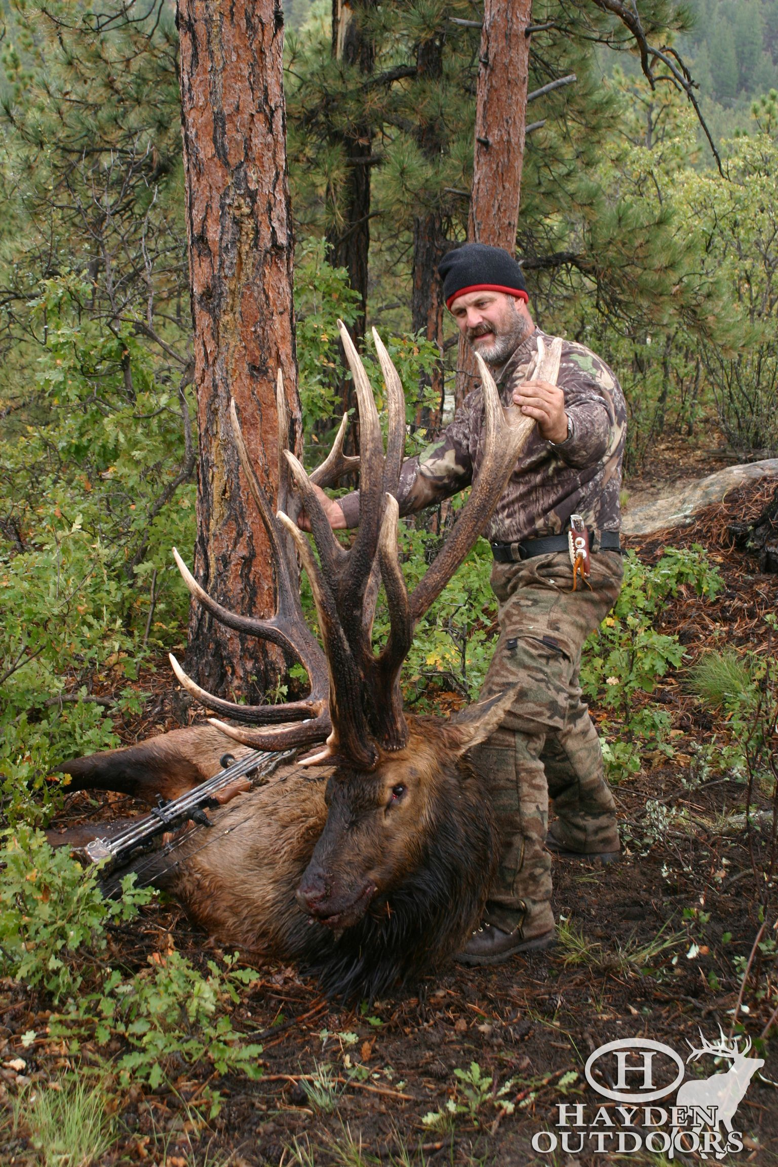 ElkHunting on the beautiful Maxwell Ranch in Las Animas