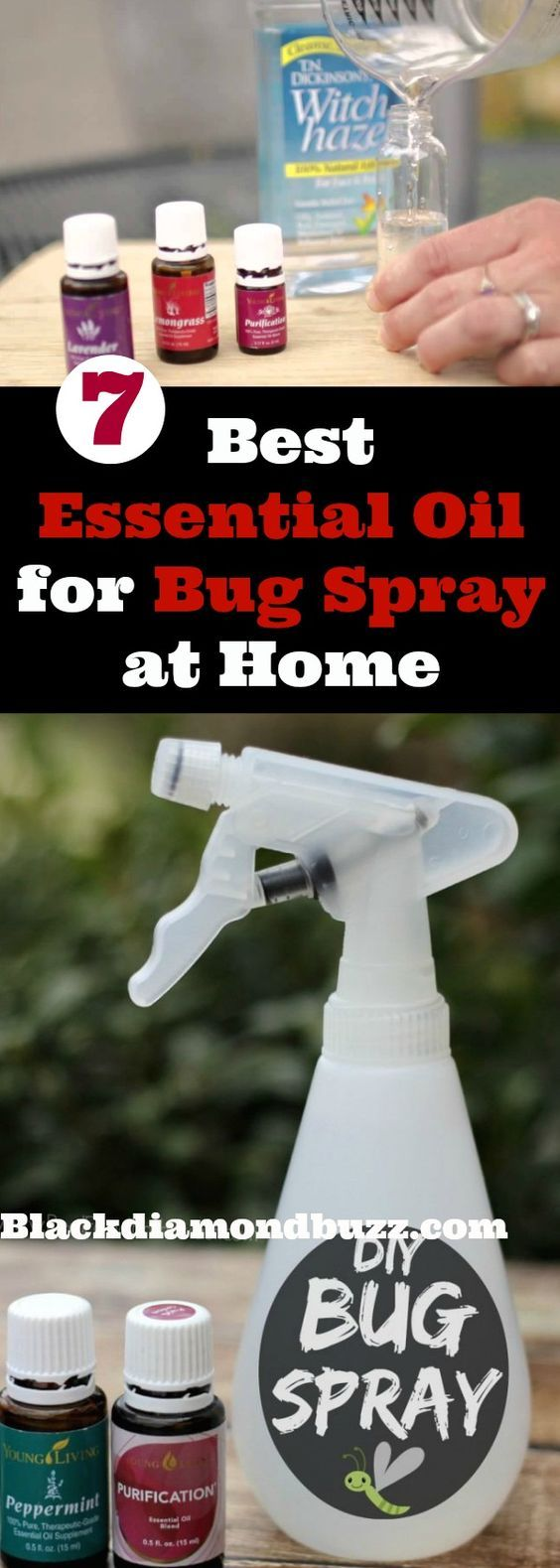 7 Best Essential Oil for Bug Spray at HomeMosquitoes,Bed