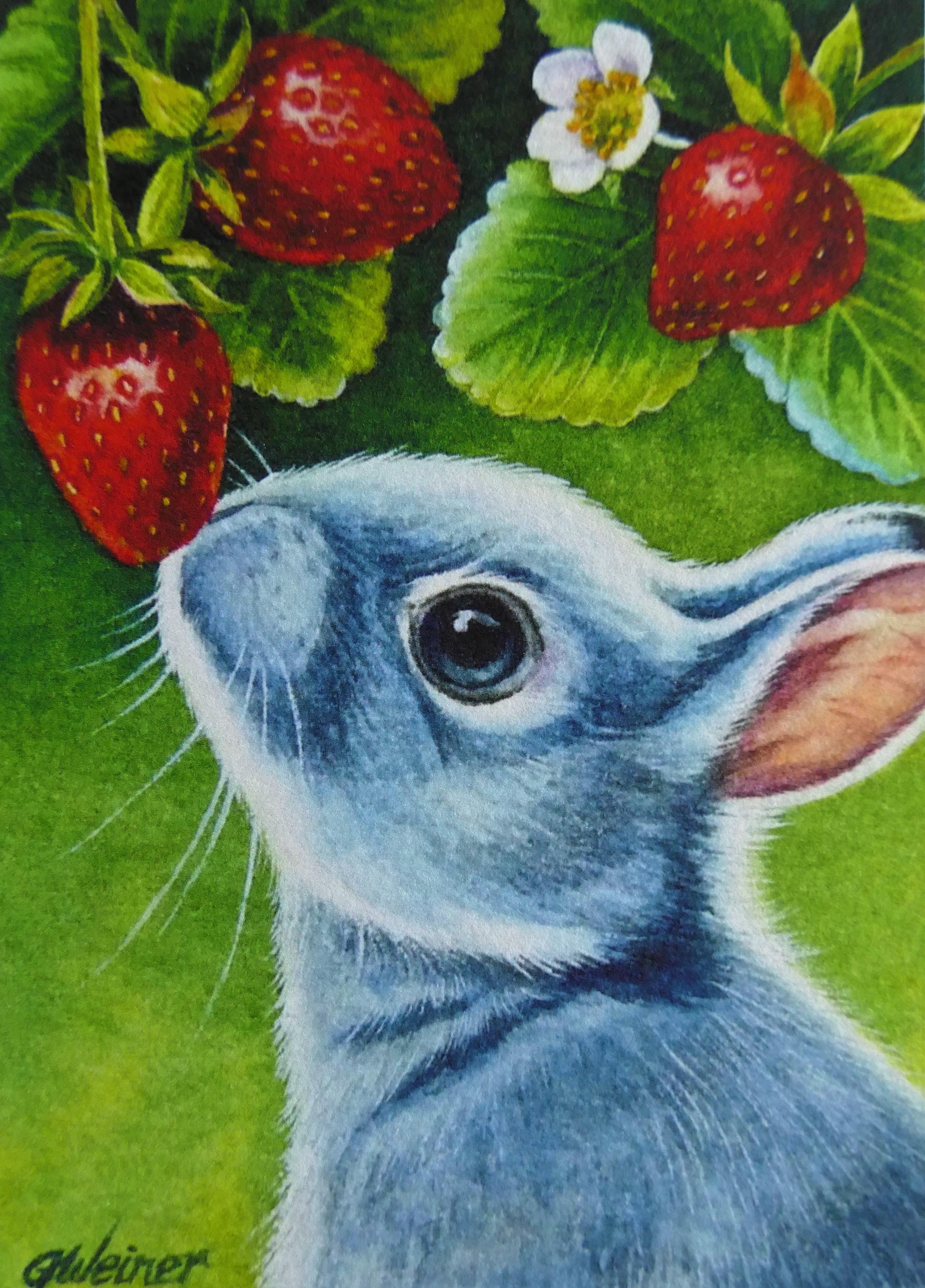 Pin on Bunny Rabbit Greetings