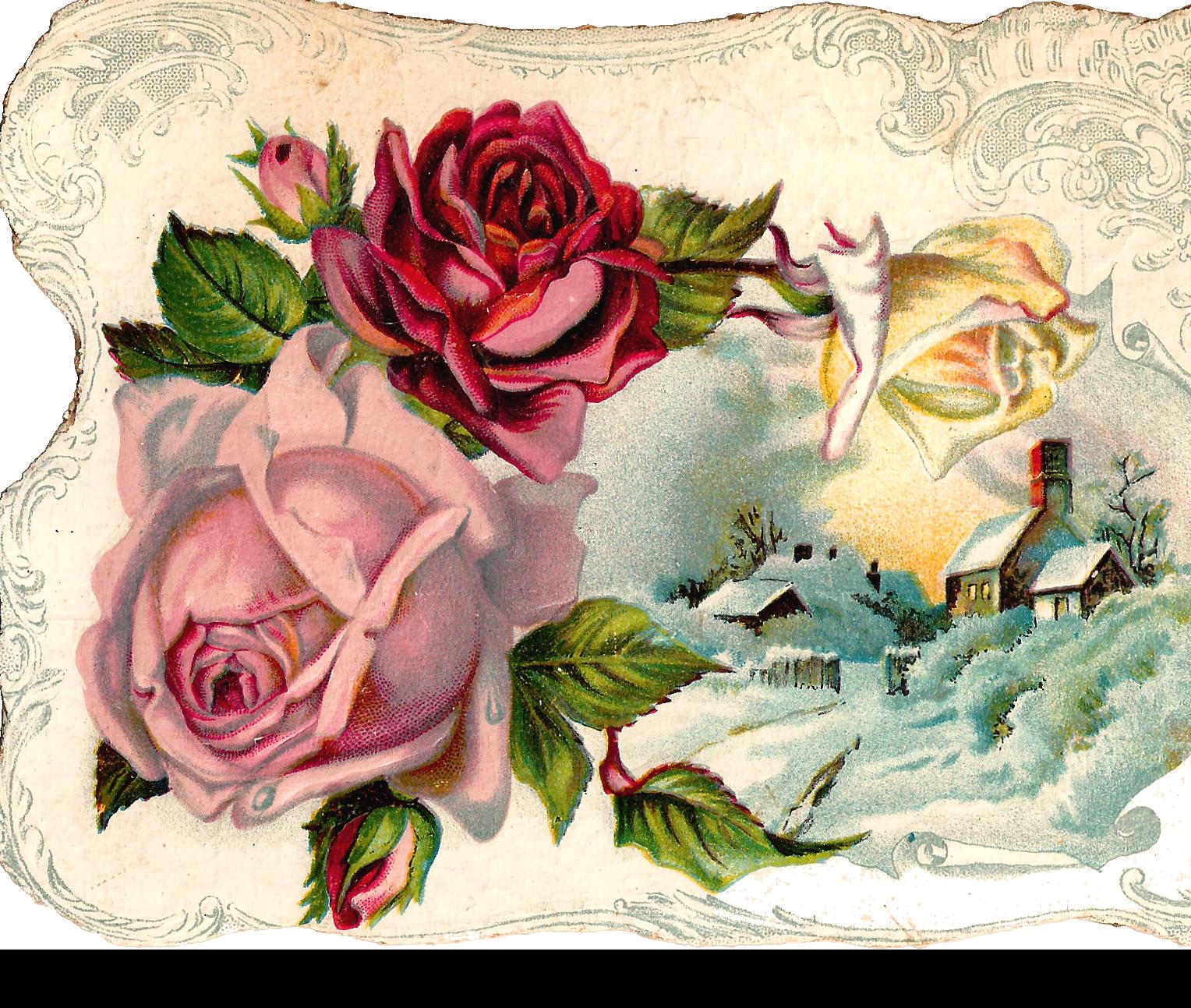 Antique Free Digital Flower Pink Rose Corner