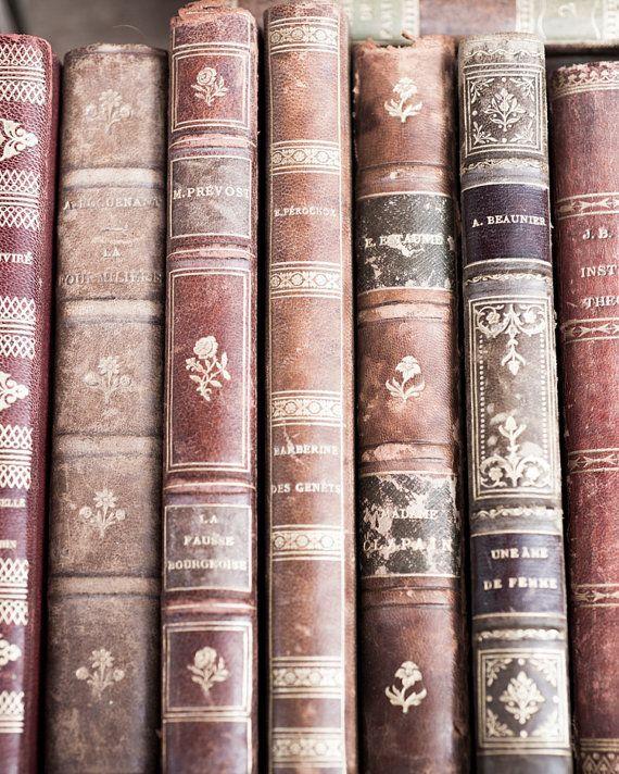 Vintage Leather Books in Paris Paris