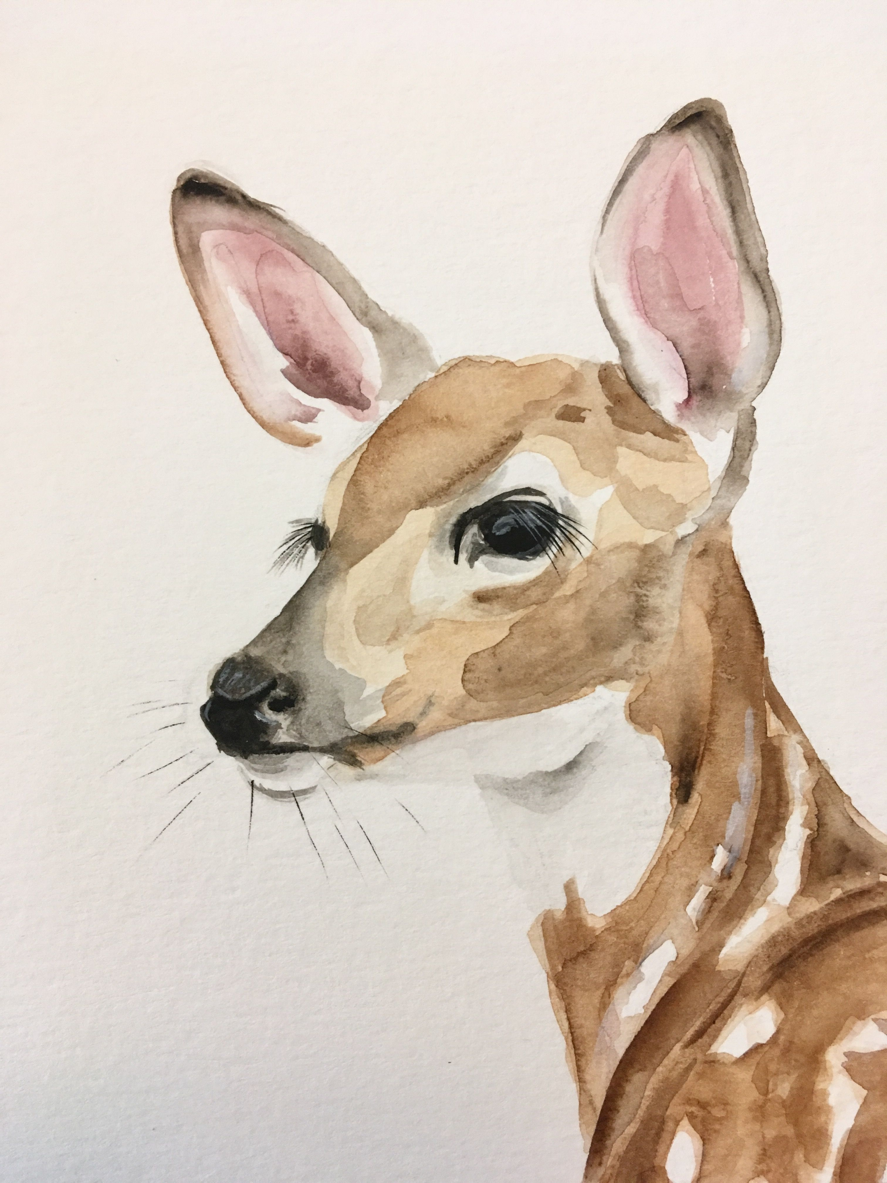 Fawn Kirsten Dill Watercolor Etsy Sonoranwatercolors Zeichnungen