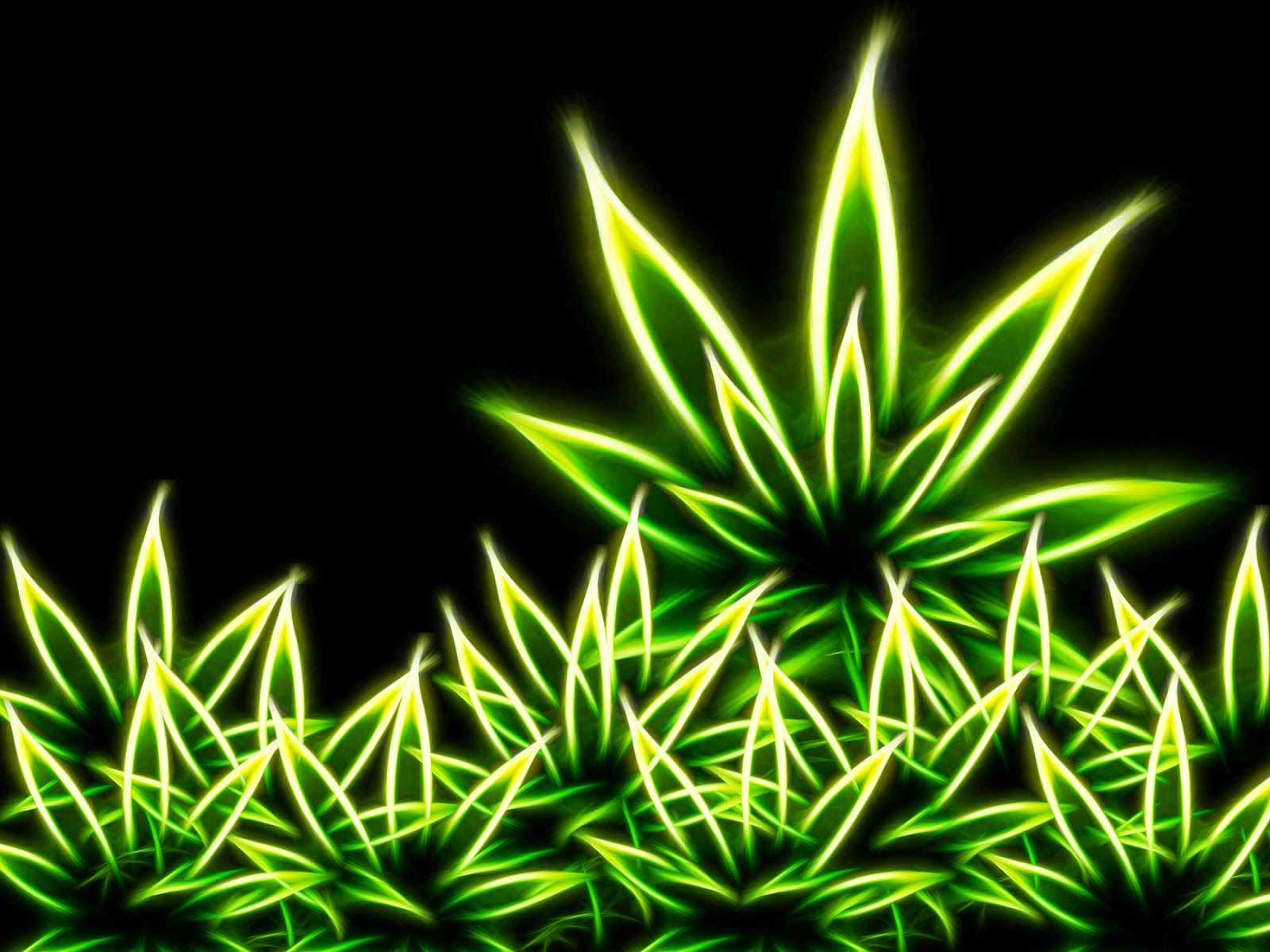 weed nokia wallpapers download free page of