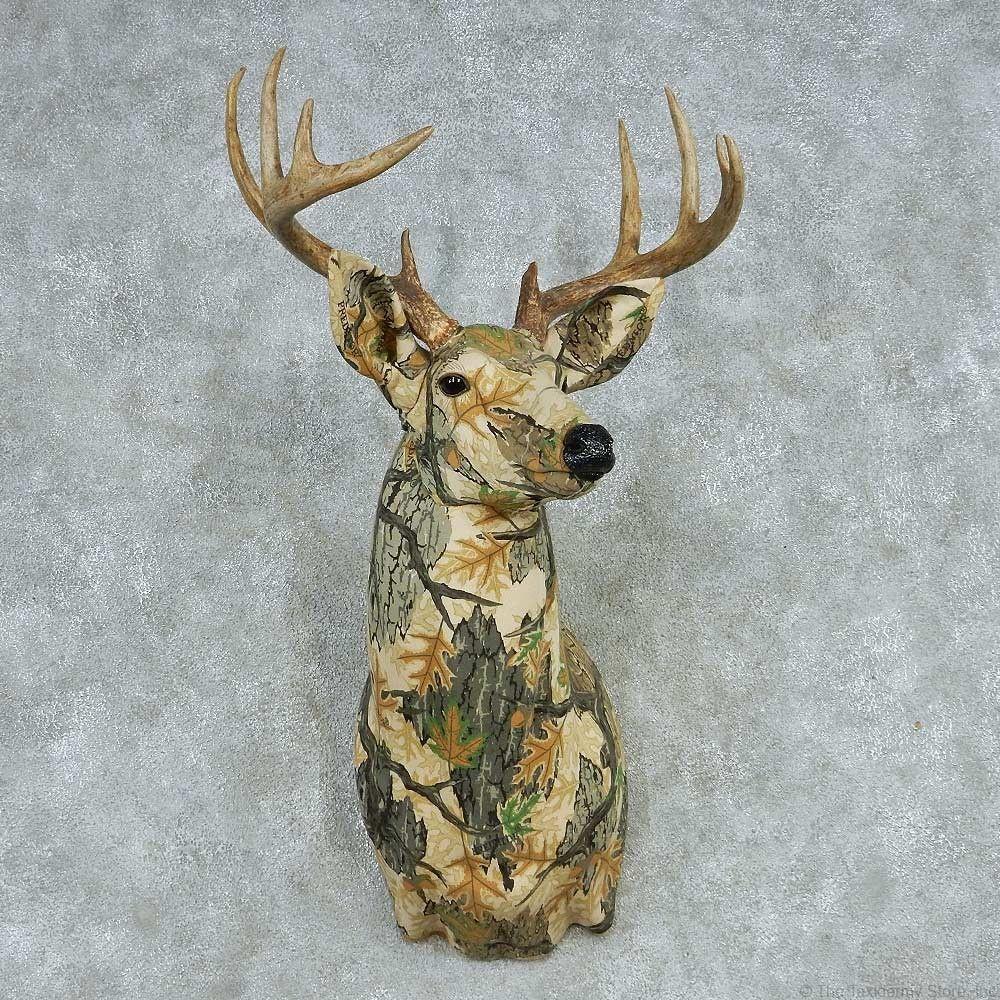 Fatal deer disease would impact more than hunters in Alabama |Wide Deer Wildlife