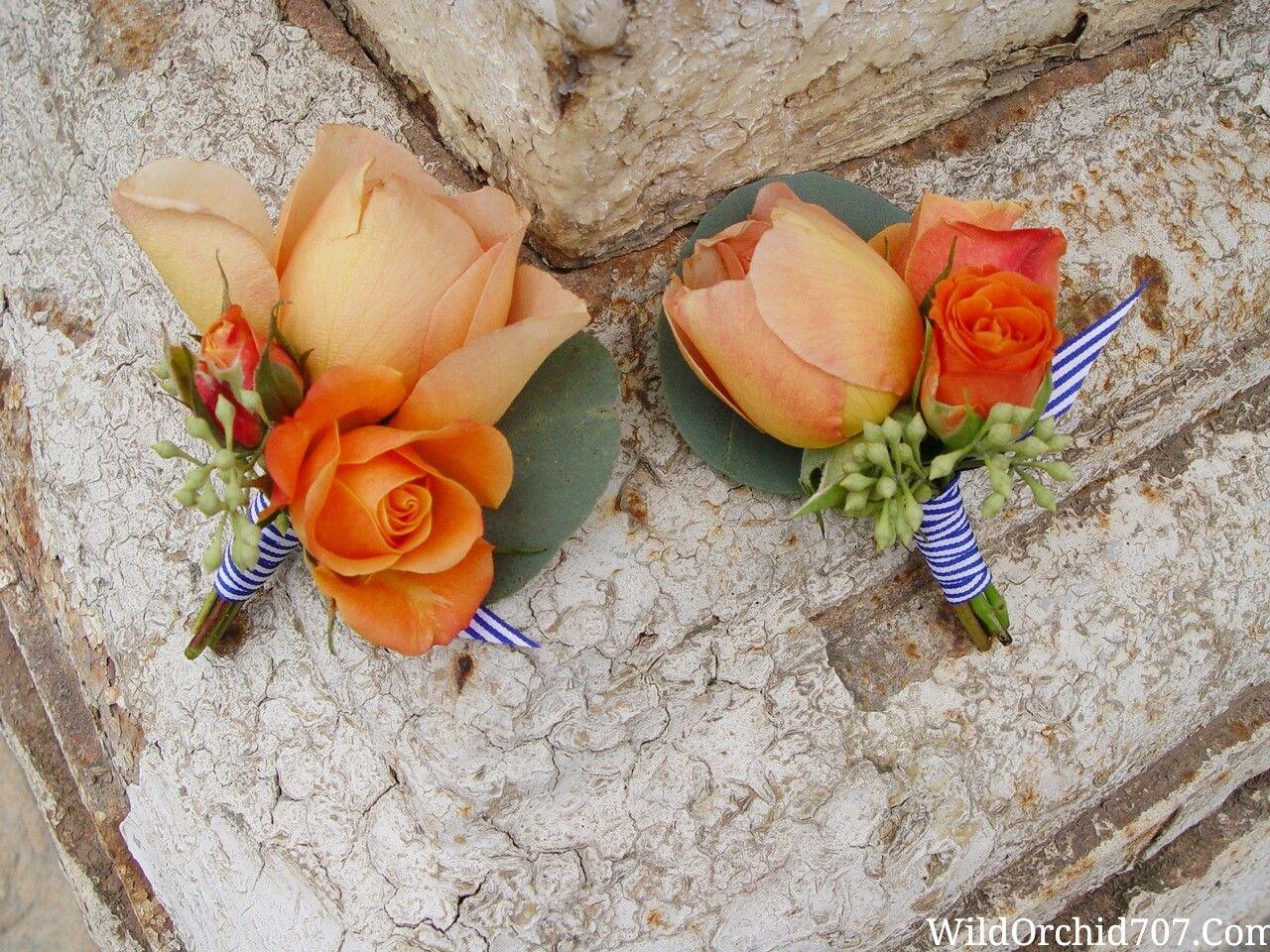 Peach Garden Rose Boutonniere groomsmen boutonnieres. peach garden roses, burnt orange spray