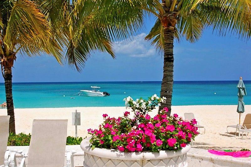 Free Online Dating in Cayman Islands - Cayman Islands Singles