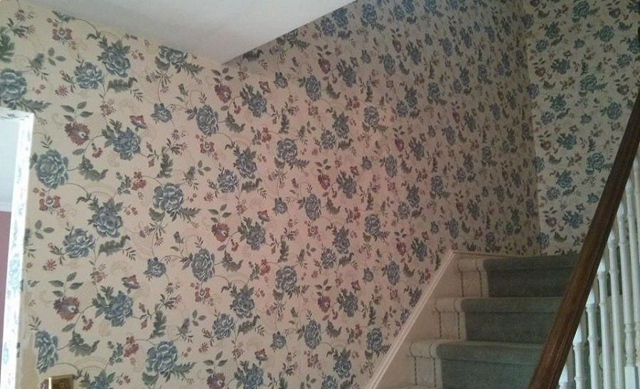 Getting Ready To Remove Wallpaper Removewallpaper Modern