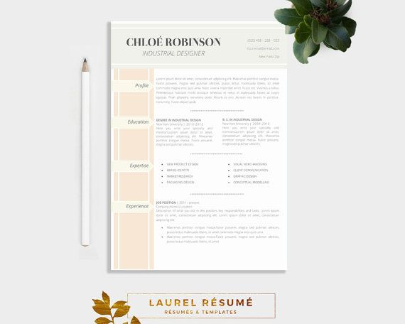 Elegant Résumé Template 2 Pages Resume Free Cover Letter + 1 page - resume 2 pages