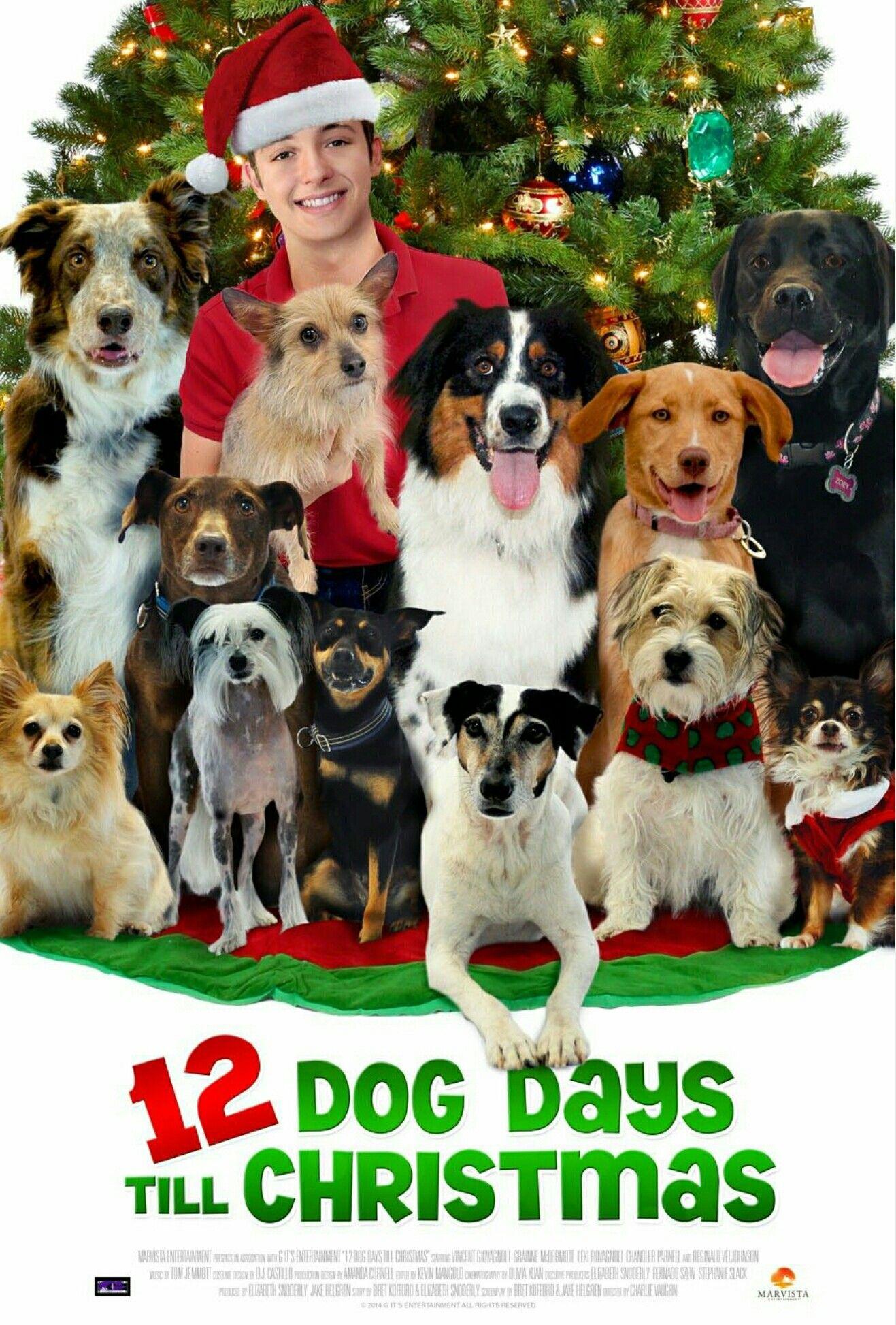 12 Dog Days Till Christmas 2014 Christmas Movies Dog Movies Days Till Christmas