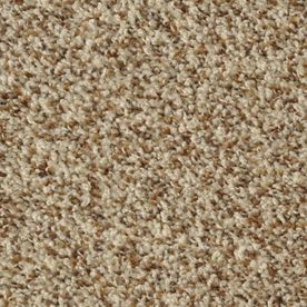 Dixie Group Active Family Maple Springs Chestnut Hill Frieze Indoor Carpet