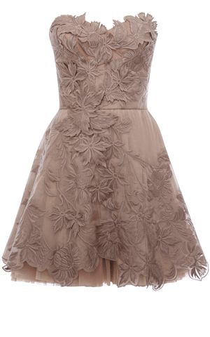 Romantic Embroidery Dress from Warehouse in Mauve/Mink.