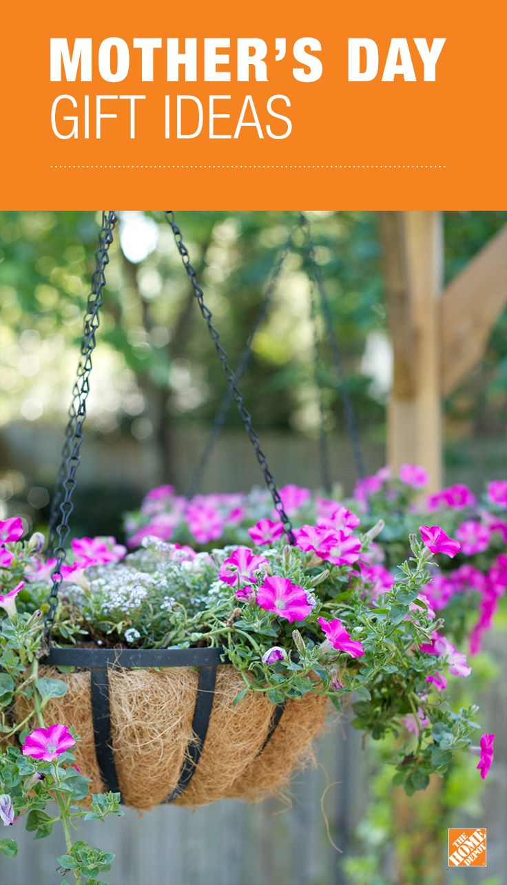 Mother\'s Day gift idea: Choose your mom\'s favorite annuals and plant ...