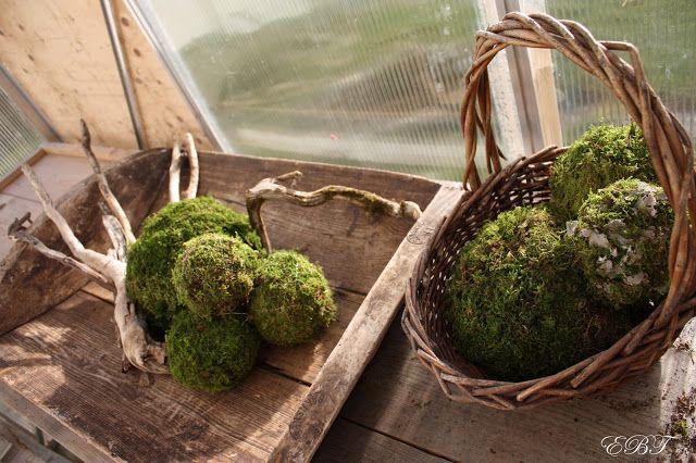 Hus og hagegleder: Hvordan lage mosekuler.......
