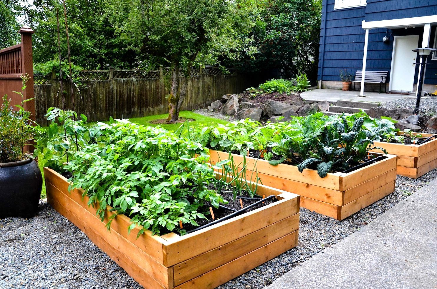 Vegetable Garden Plans For Raised Beds Raised Bed