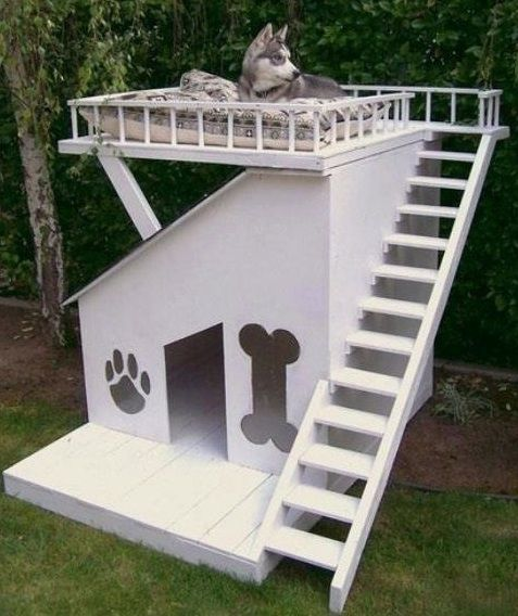 And I Thought Our Dogs Were Spoiled Sorry Annabelle And Keeno I Don T Think We Will Have This In The New House Cool Dog Houses Modern Dog Houses Dog House