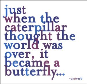Just when the caterpillar thought the world was over, it became a butterfly.