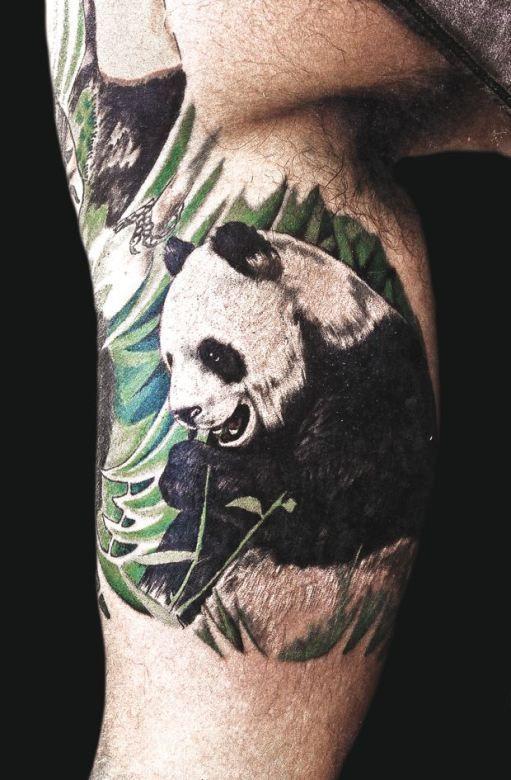 Mario Barth Inked Magazine Panda Bear Tattoos Panda Tattoo Bear Tattoos
