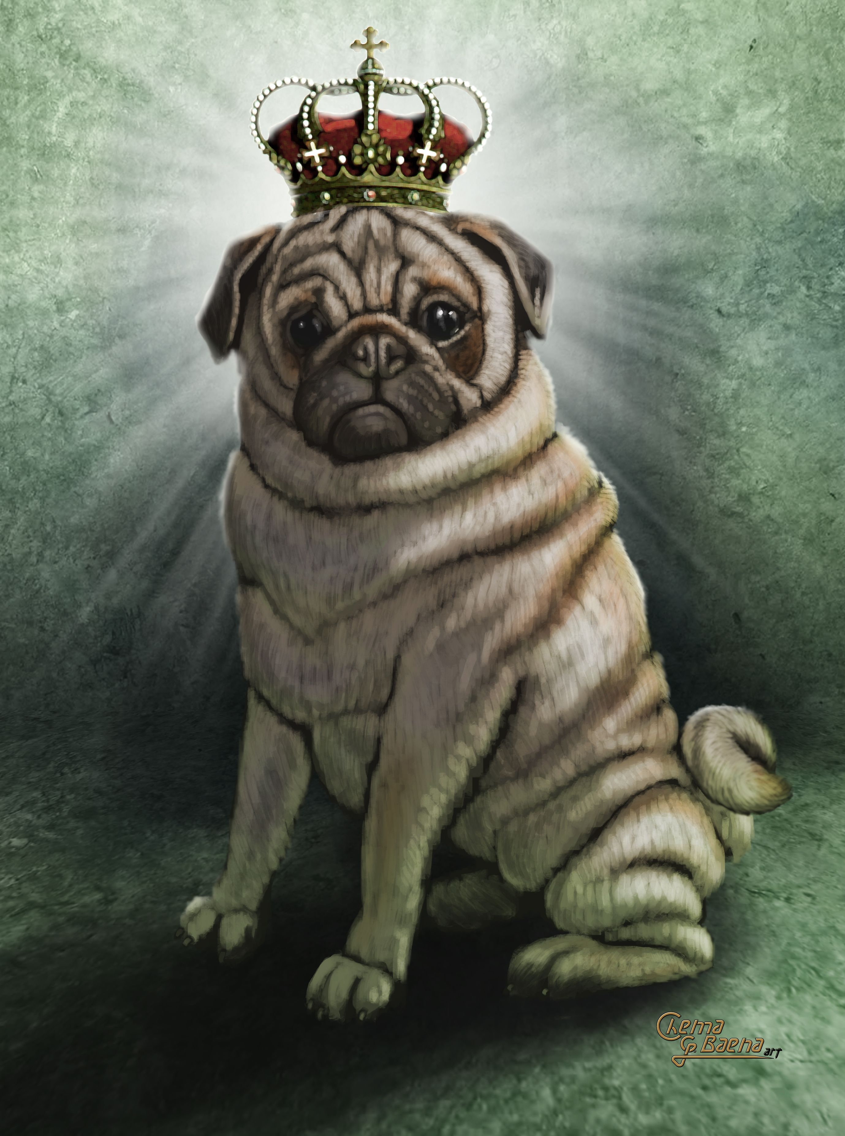 Dog Perro Pug Carlino Crown Corona Illustration Ilustracion