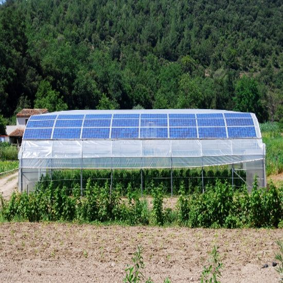 Joseph Orr S Fabulous Mud Heat Storage Solar Greenhouse Homesteading And Livestock