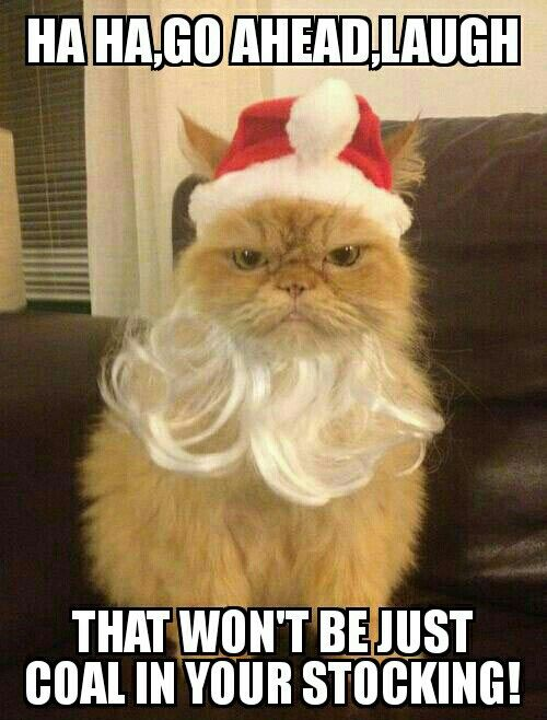 Funny Christmas Lustiges Pinterest Funny christmas, Funny