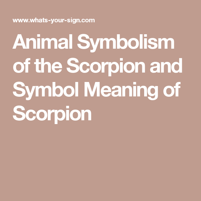 Animal Symbolism Of The Scorpion And Symbol Meaning Of Scorpion