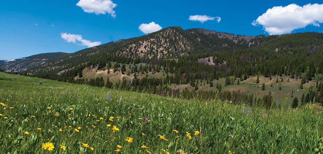 Montana Guest Ranch Yellowstone Big Sky Activities