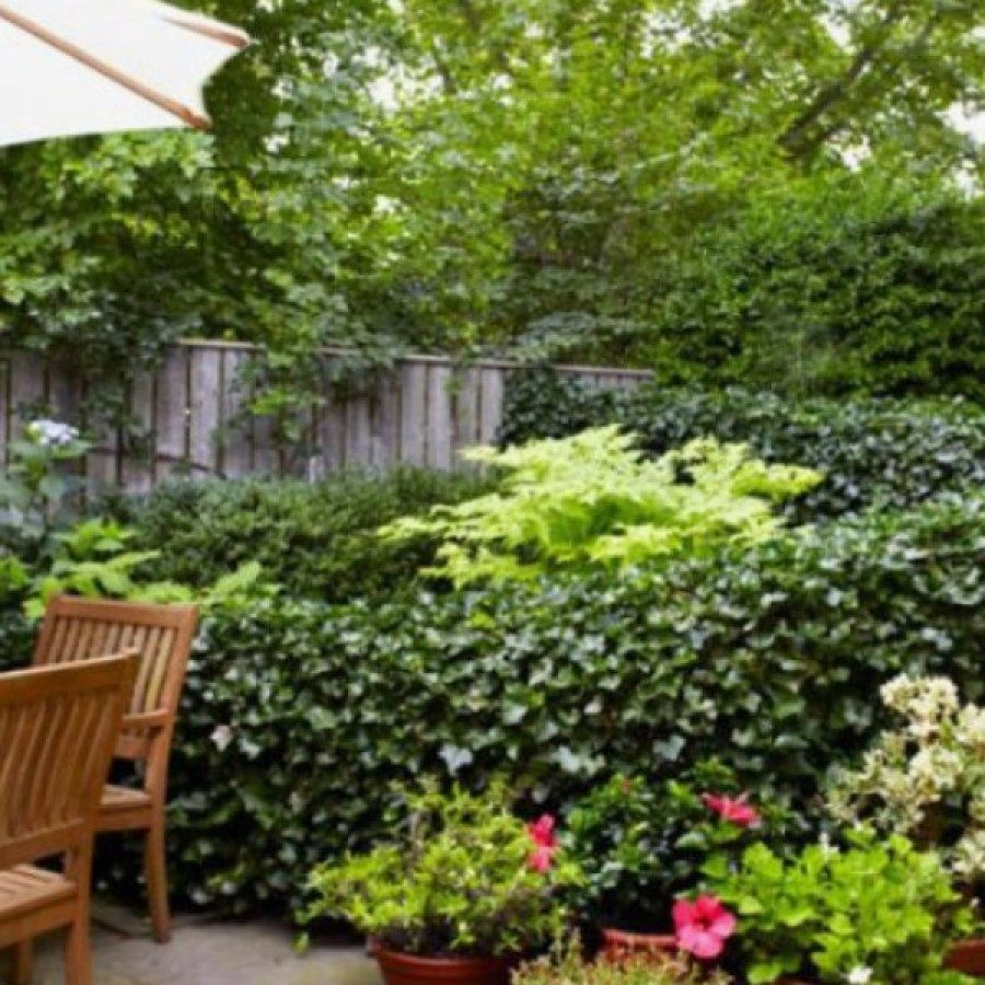 Diy Landscape Design For Beginners Vorgarten Landschaftsbau