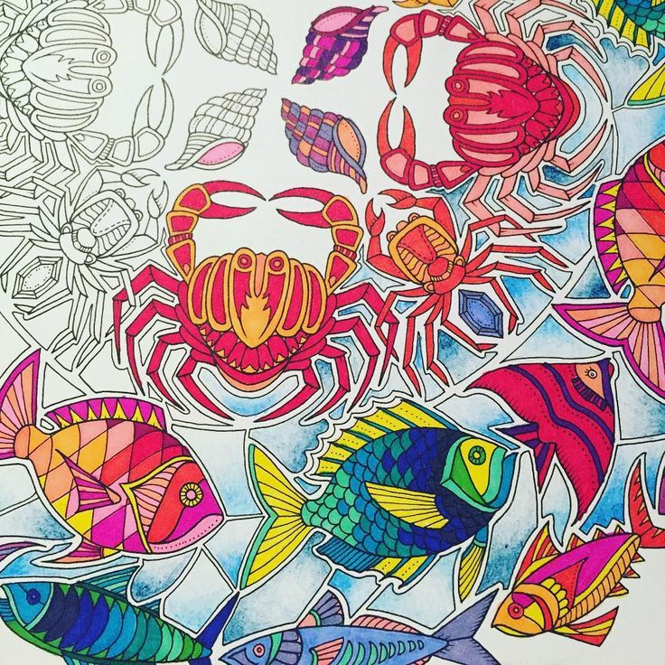 Image Result For Completed Pages Of Adult Coloring Books Joanna Bradford Lost Oceans