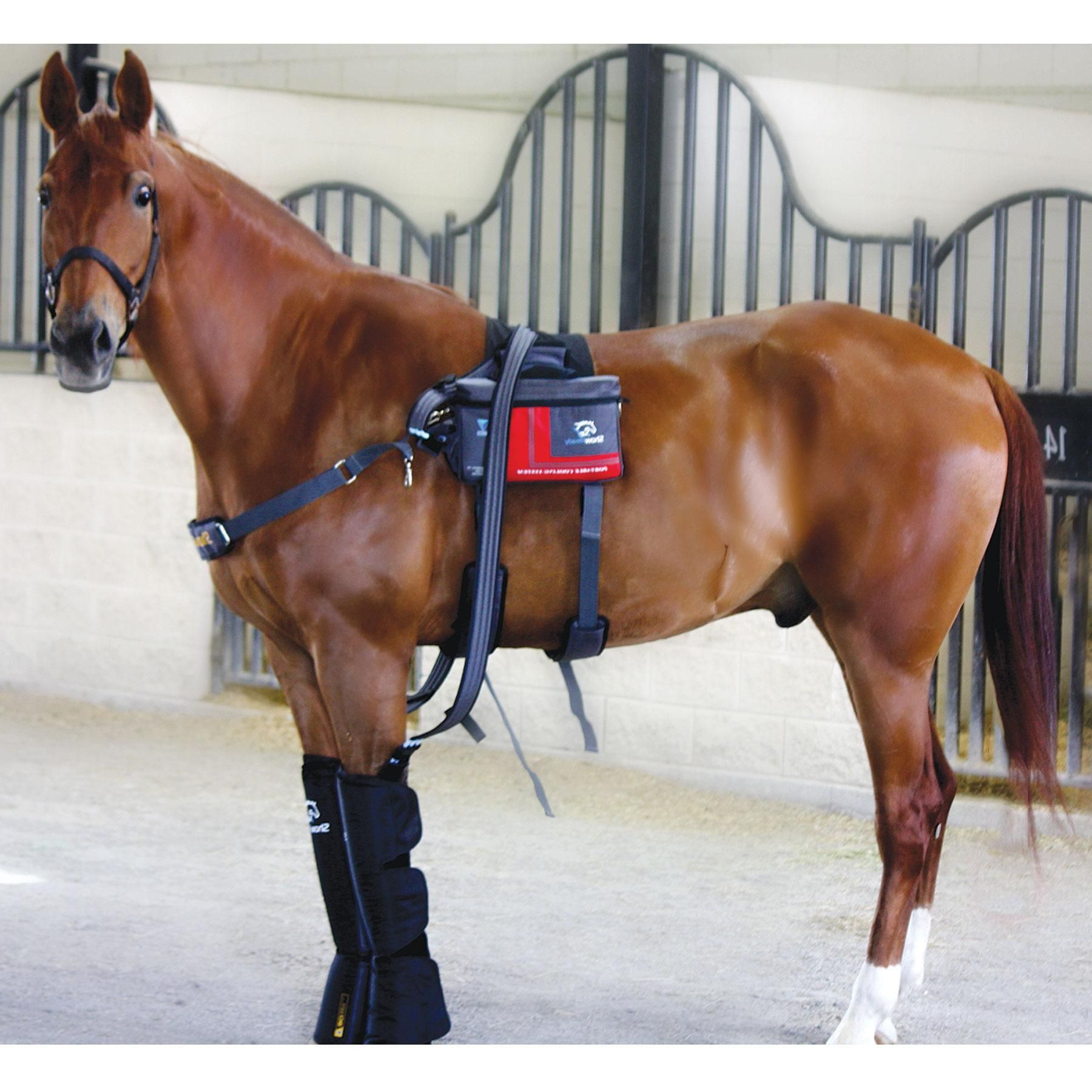 We love our NEW Show Ready Cordless Equine Ice System. It is the most cost effective therapy system to date-and have the price of Game Ready.