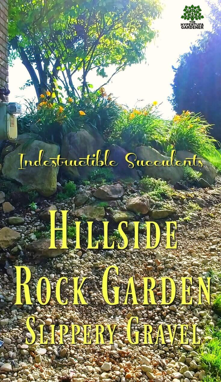 The North Side Another Hillside Rock Garden is part of Container Rock garden - Yes, two sides to the house  So I have a second hillside rock garden to fix  Best news is that this one already has boulders  I just need to plant sedum