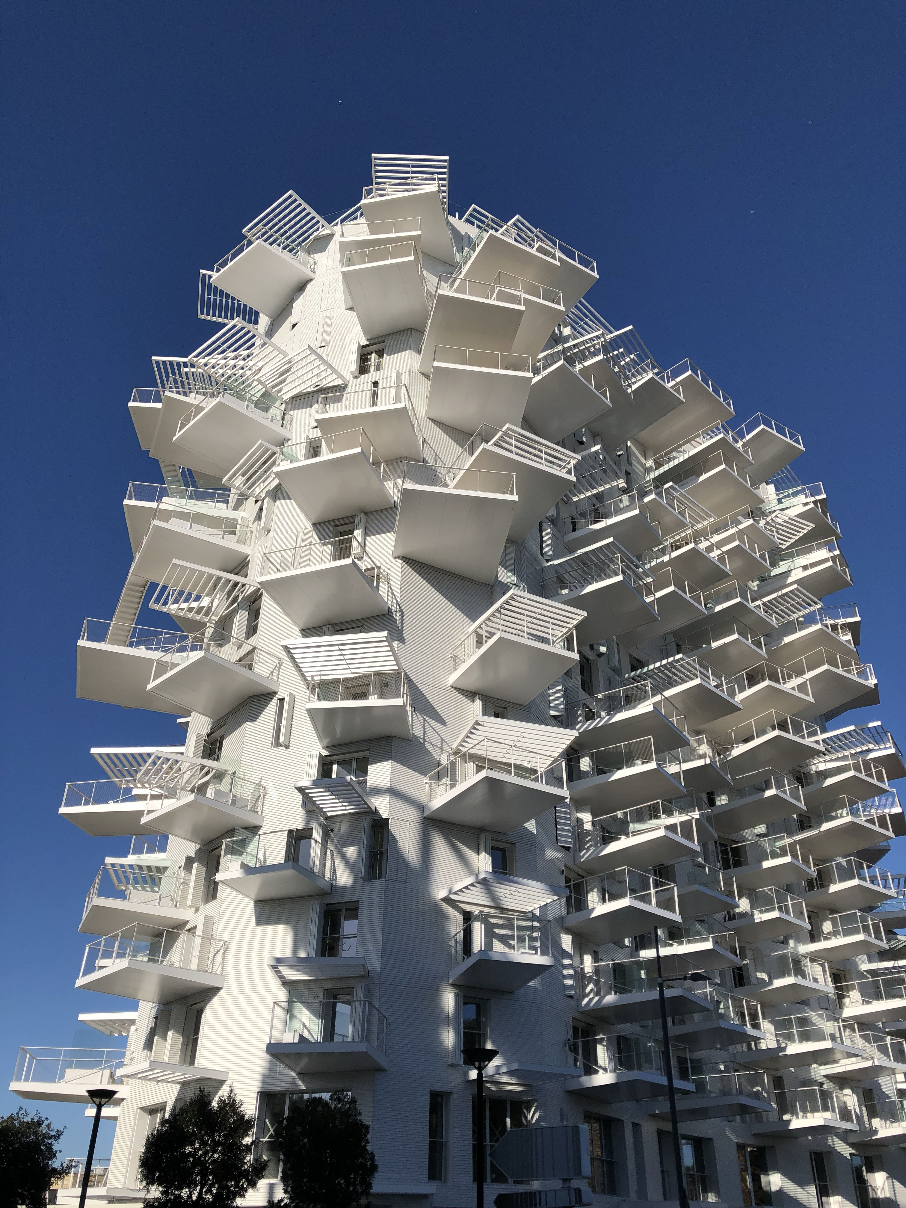 The White Tree Montpellier France Maison Architecte Moderne Maison Architecte Architecture Interieure