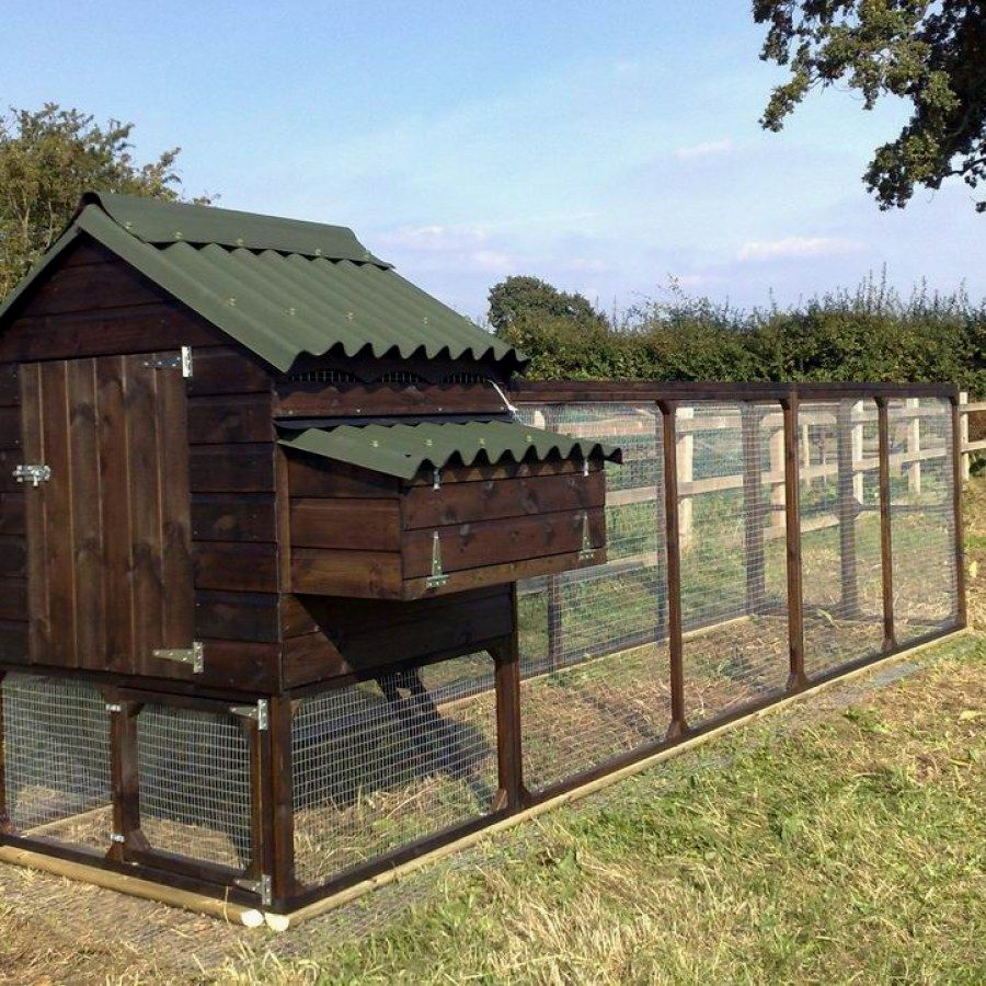 50 Simple DIY Chicken Coop kits you should assemble for ...
