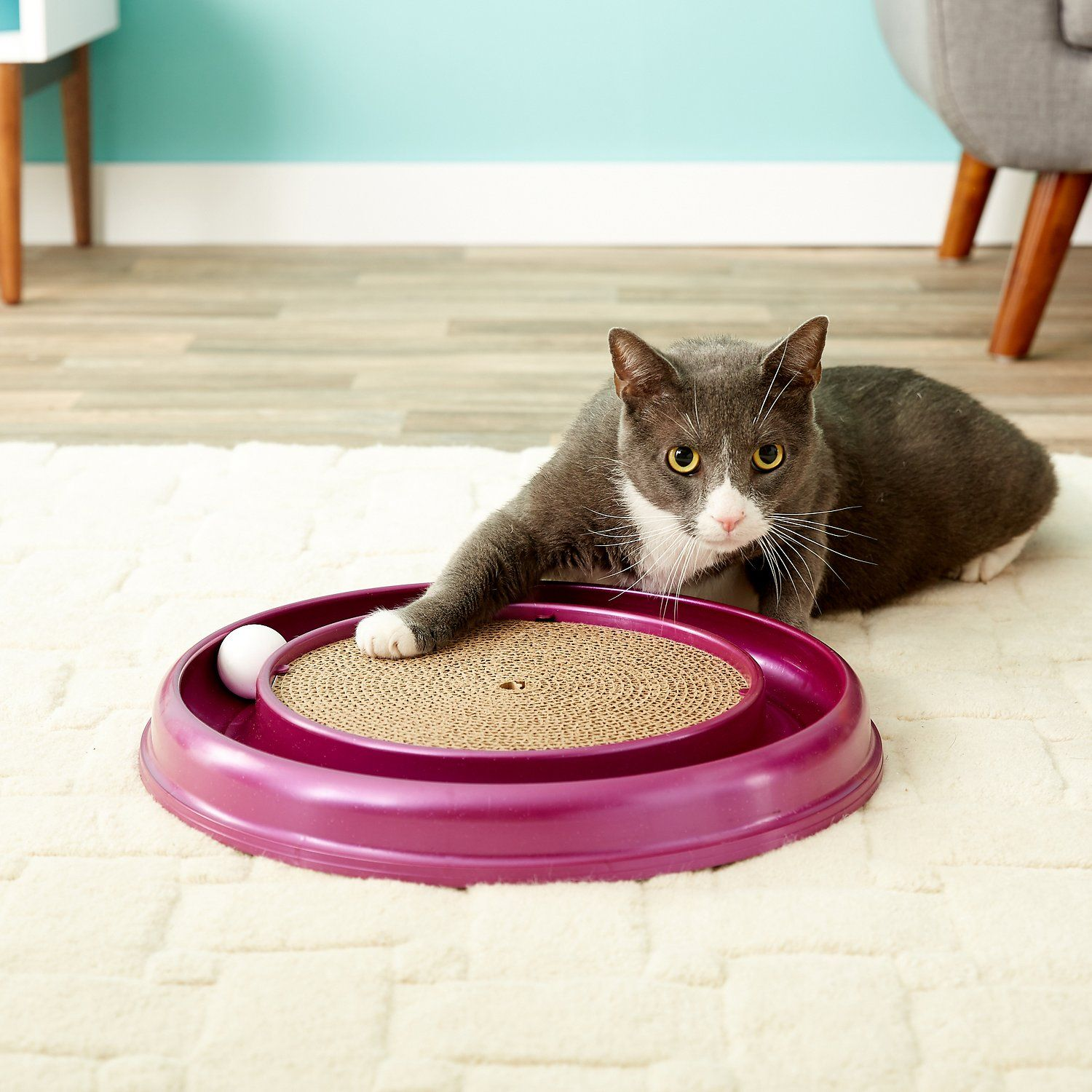 The famous Turbo Scratcher cat toy offers hours of fun and