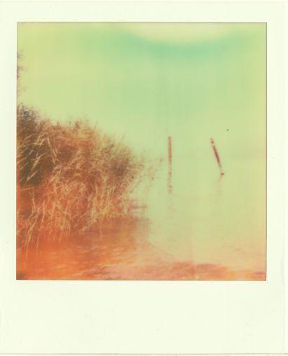 untitled by Giovanna Santinolli
