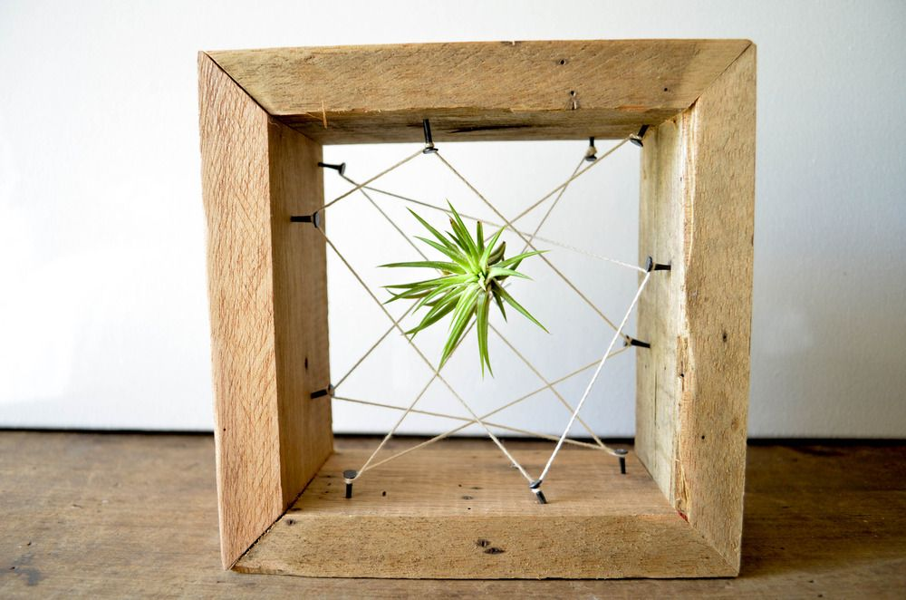 Reclaimed wood air plant boxes.