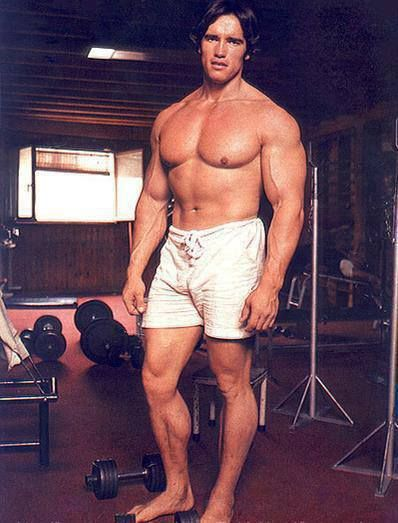 Arnold schwarzenegger pinterest way back photo of the austrian oak dumbbell flyes and barbell curls the man truly knows how to work the chest and arms malvernweather Image collections