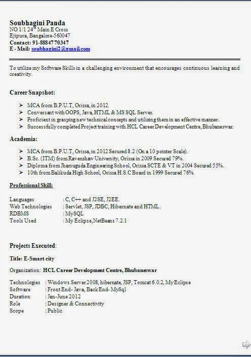 amazing cv examples Sample Template Example ofExcellent Curriculum - sql server resume