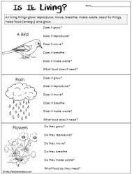 Living or Non Living Worksheet | Genesis Curriculum | Pinterest ...