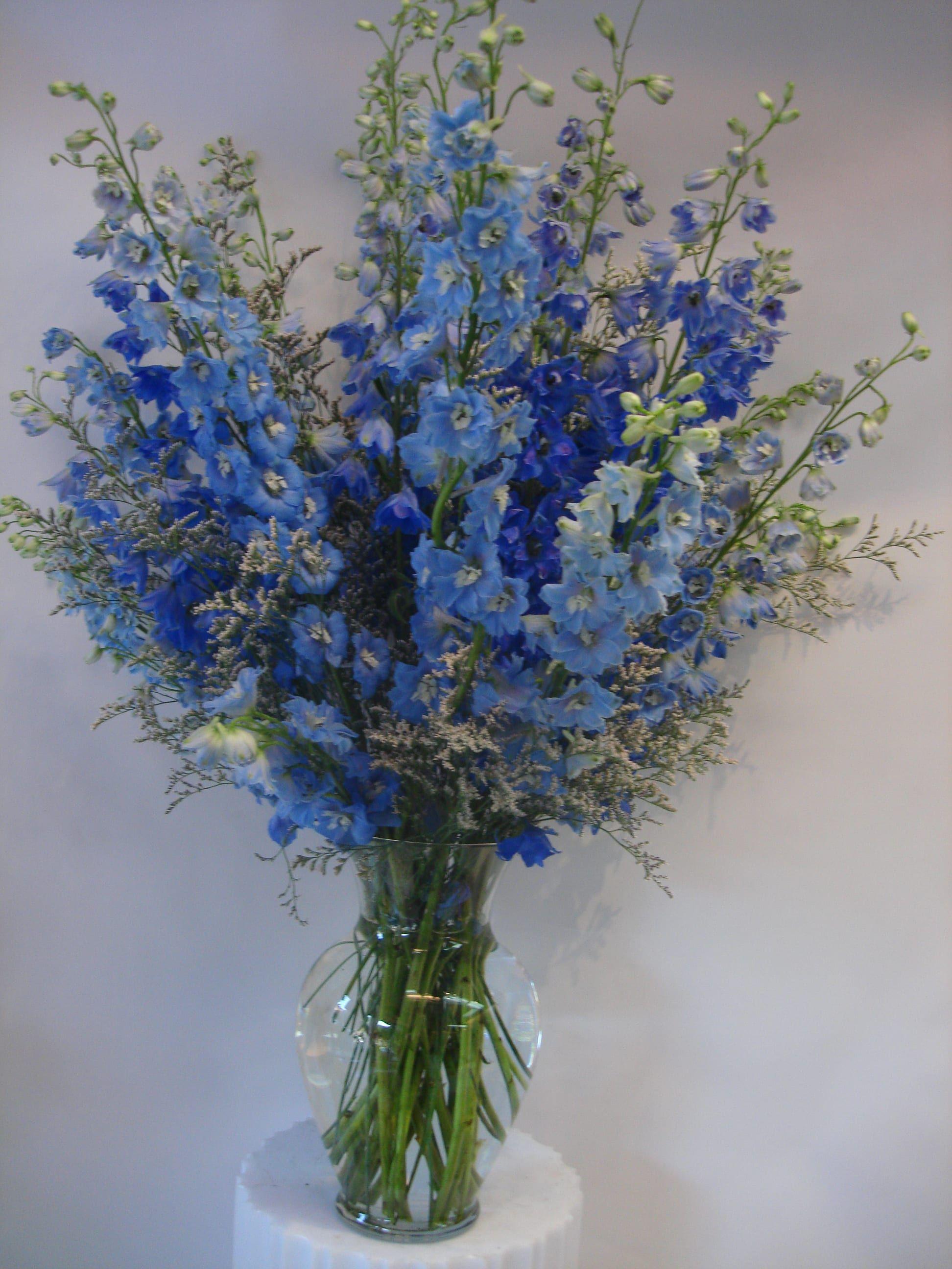 Send The Blue Delphinium Flower Arrangement Bouquet Of Flowers From Fillmore Florist San Delphinium Flowers Blue Flower Arrangements Beautiful Flowers Pictures